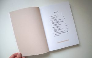 The Goaldigger mindset - Boek